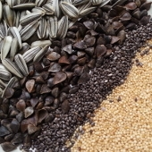 Seed Crop, Grain & Pseudocereal Seeds