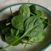 Heirloom Spinach Seeds
